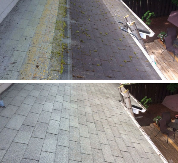 Salem Roof Cleaning Referred Roof Cleaning Salem Oregon